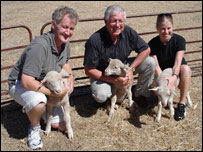 Pictured with the lambs, Dr Russell Snell,Prof. Richard Faull and Jessie Jacobsen